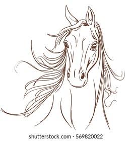 Horse head made in line art style. Equestrian school or club symbol. vector