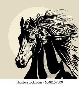 Horse head with a mane. Hand drawn vector illustration. Hand sketch.