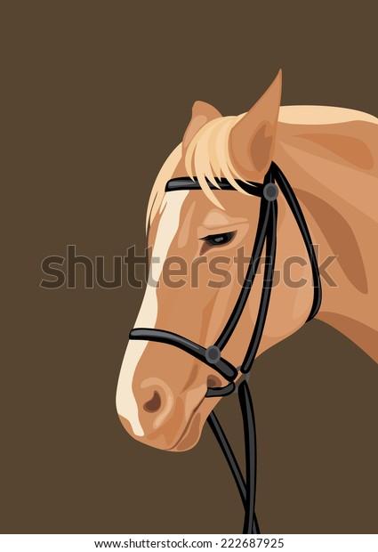 horse-head-on-dark-background-600w-22268