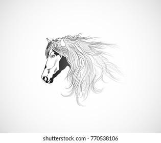 horse head profile