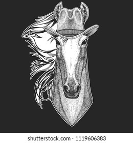 Horse, hoss, knight, steed, courser. Wild west. Traditional american cowboy hat. Texas rodeo. Print for children, kids t-shirt. Image for emblem, badge, logo, patch.