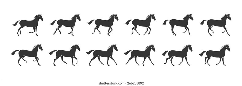 Horse in motion gallop black