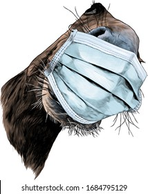 horse muzzle nose and mouth close-up looking at the camera strong perspective in a medical mask against a virus, sketch vector graphics color illustration on a white background