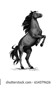 Horse on rears. Wild black mustang racer or stallion trotter rearing. Vector symbol for equine sport races or rides. Racehorse mustang for equestrian sport horserace contest or exhibition