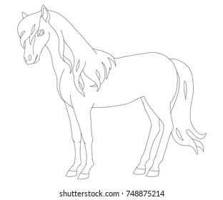 Horse page for coloring book. Animal cartoon vector illustration.