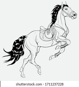 Horse reared and bent its front legs bandaged with polo wraps. Stallion dressed in sport tack including saddle, snaffle bit bridle. Linear vector clip art for equestrian goods.