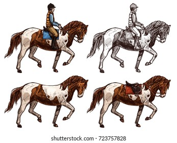 Horse and rider, monochrome and color set, sketch. Four illustrations in retro engraving style, Joker and animal in color and black ink lines. Horseback ridding concept. Hand drawn vector isolated