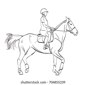 horse riding illustration. line art drawing on white. equine sports theme vector