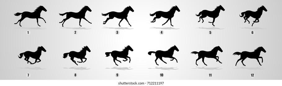Horse Run cycle Silhouette for animation
