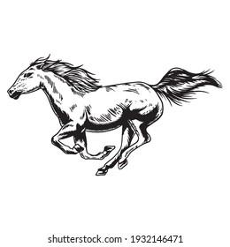 Horse run vector illustration handrawn