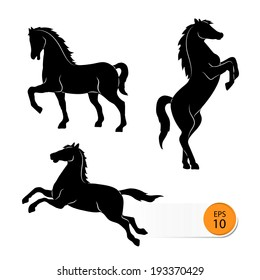 Horse silhouette on a white background;