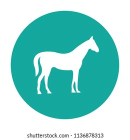 Horse silhouette vector icon blue background