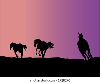 Horse silhouettes - vector illustration