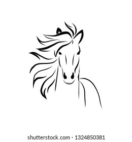 horse silhuette vector hand drawn black and white vector