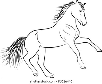 horse sketch - freehand illustration on a white background, vector