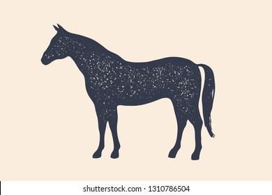 Horse, stallion. Concept design of farm animals - Horse side view profile. Isolated black silhouette horse or stallion on white background. Vintage retro print, poster, icon. Vector Illustration