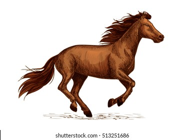 Horse stallion racing sign. Mustang mare running freely fast. Sport horse race symbol for club, team badge, horserace bet sign