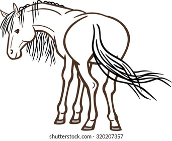 Horse standing to the Rear