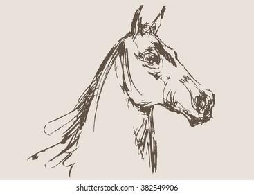 horse vector, hand draw sketch