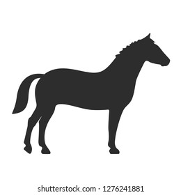 Horse vector icon on white background
