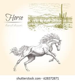 Horse. Vector vintage engraved illustration with landscape.