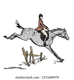 Horseman horse rider. English style jumping horseback man. Riding male on dapple grey horse. Hand drawing vector vintage art isolated on white in engraving style. England fox hunting steeplechase