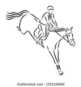 Horsemanship, jumping horse, dressing horse sketch, contour vector illustration