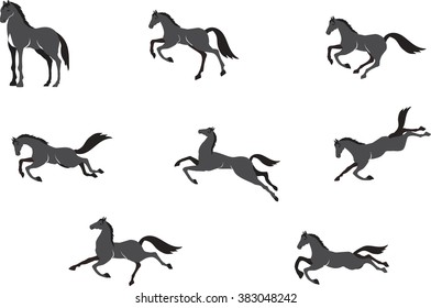 Horses in different poses vector set, isolated on white