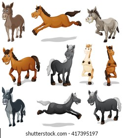 Horses and donkeys in different poses illustration