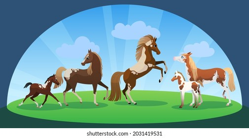 Horses and foals. Cute animals family with mom and baby. Vector illustration