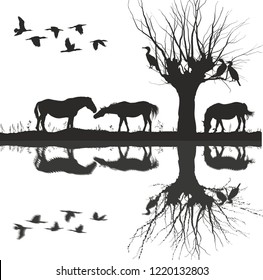 Horses are grazing at lake and cormorants on tree and in the air, vector illustration