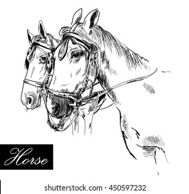 Horses Harness Ink Drawing Vintage Style Stock Vector (Royalty Free