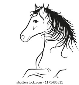 horse's head drawn in black outline, coloring