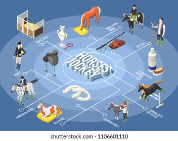 Horses and jockey 3d flowchart with ostler horse stall horseback riding running with obstacles isometric elements vector illustration