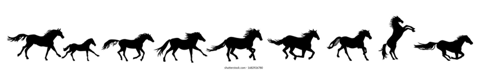Horses running silhouette vector illustration. Herd of stallions.