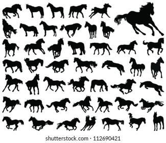 Horses silhouette 4-vector