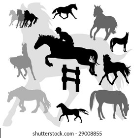 horses silhouettes on background. vector