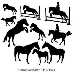 Horses silhouettes vector collection