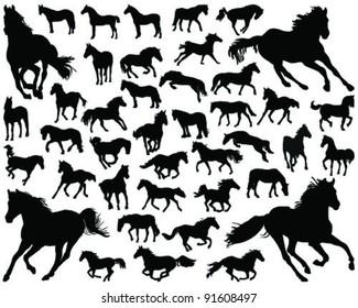 horses silhouette-vector