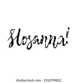 Hosanna - Easter hand drawn lettering calligraphy phrase isolated on the white background. Fun brush ink vector illustration for banners, greeting card, poster design, photo overlays