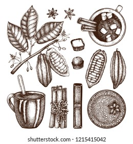 Hot chocolate in a cup top view. Cinnamon, anise stars, cocoa beans, cocoa plant and sweets drawings. Vector beverages and food collection. Hot drinks menu template for confectionery or coffee shop.