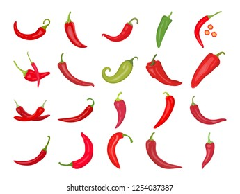 Hot Red & Green chili pepper vector icon  set isolated on white background. Red and green Chilies.