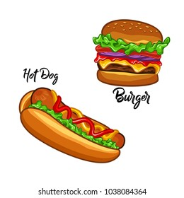 Hotdog and burger illustration fast food