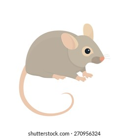 House Mouse - Illustration Isolated on White Background