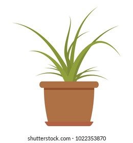 House plant icon. Flat illustration of house plant vector icon for web