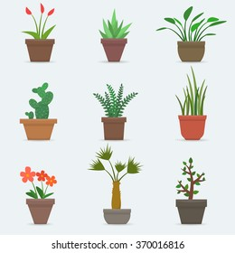 House plants and flowers in pots. Flat style vector illustration.