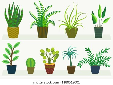 house plants in pots, flat design
