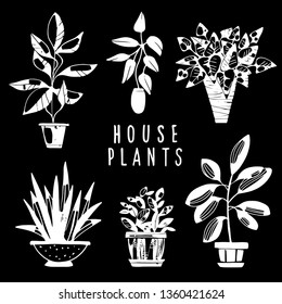 House plants white hand drawn set. Potted flowers isolated on black background. Handwriting font