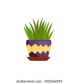 A houseplant with long leaves in a purple pot. Vector illustration on a white background with a simple cartoon style. Perfect for a poster or an ad in a flower shop