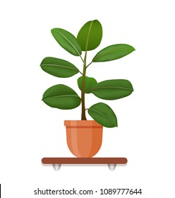 Houseplant in a pot in flat style. Indoor gerb on shelf isolated on a white background. Living room design decoration element.